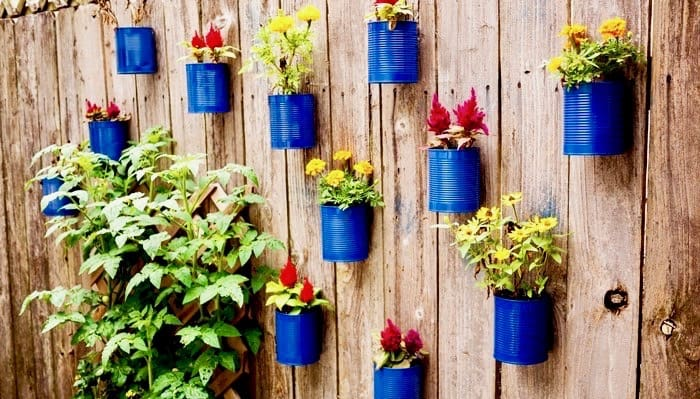 tin can fence garden